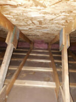 Attic Extraction and Replacement