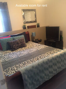 **ROOM FOR RENT IN MILLWOOD SUBDIVISION OF SACKVILLE**