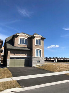 New 4 bedroom Detached Home in East Gwillimbury