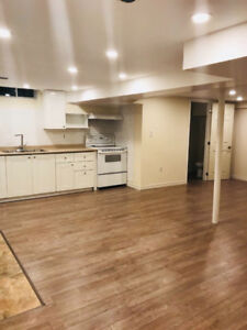 Brand new 2 bedrooms basement apartment for rent