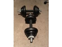 Dumbbells for Sale