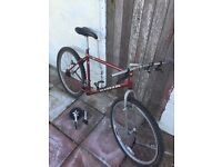 Retro 1994 kona fire mountain 19inch project 2 forks