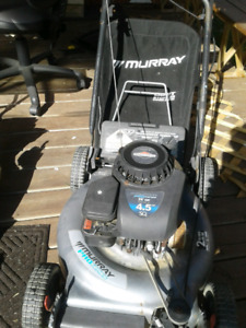 Lawn mower - needs servicing