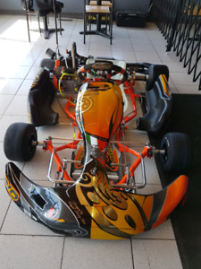 Go kart 2018 Intrepid LO206 full size chassis