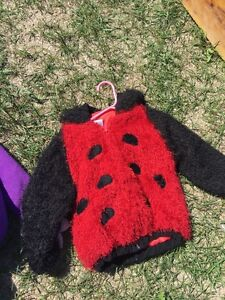 Halloween costume size medium lady bug