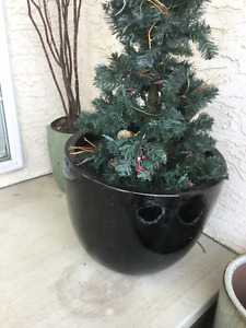 Brand New Condition Large Black Pots from Salisbury Greenhouse