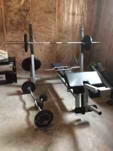 Heavy Duty Weight Bench with Weights Kingston Kingston Area image 2