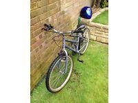 "Girls bike 24"" frame"