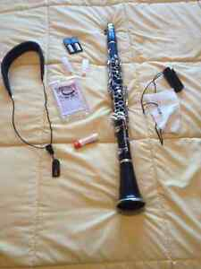 Signet Special Clarinet, Case, Cleaning equipment, Reeds