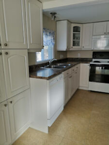 3 Bedroom Home For Rent In Chester Basin