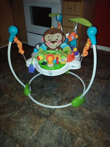 Precious Plant Jumperoo-Great Cond,Heights,Folds,Musical,etc
