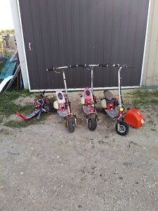 gas powered scooters