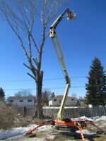Tree Removal.. Piece By Piece.. Very Safe, Fast, & Efficient
