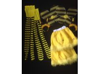 Carnival Bee costumes
