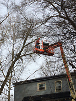 J.K. LANGLOIS WOOD SERVICES - TREE REMOVAL
