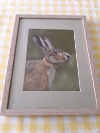 Original crayon drawing of a hare