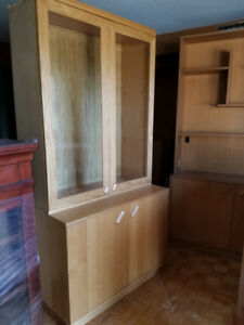 TV Console and Storage
