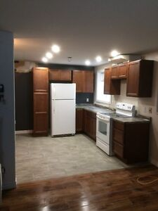 Newly Renovated One Bedroom Apartment in Airport Heights St. John's Newfoundland image 9