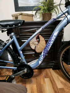 Ladies 28 speed mountain bike