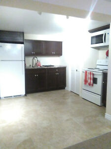 2 bedroom basement apt in house Fennell st.