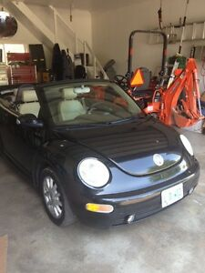 Vw new beetle convertible no winters