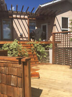 Are you wanting your deck, fence stained or painted?