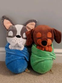 X2 dogs in sleeping bags
