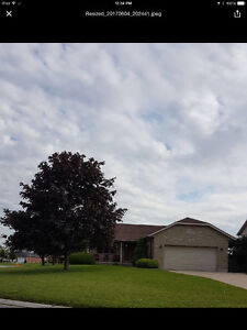 House for sale-1500 foot main floor with full finished basement