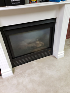 Fireplace Heat & Glo gas offered at $100