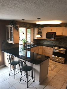 Kitchen craft cabinets and granite counter tops