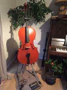 Beautiful cello