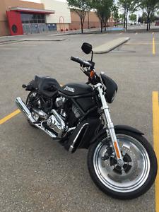 2006 Harley Davidson Nightrod VRod for sale/trade