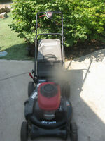 SERVICED LAWNMOWERS/TRADES