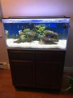 55 gal - saltwater aquarium system