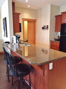 Downtown Penticton Condo, Fully Furnished, Great Location
