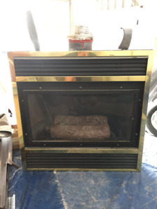 Renovation Sale - Great Condition Gas Fireplace Insert
