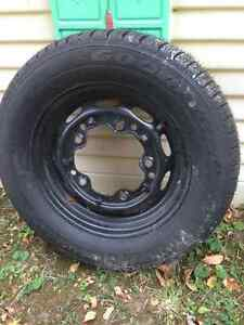 VW beetle rim and tire