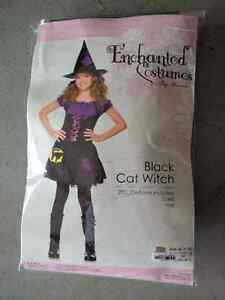 Enchanted Costume Black Cat Witch