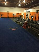 Private gym,excellent environment and flexible schedules