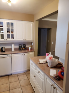 Kitchen cabinets available at $250 OBO