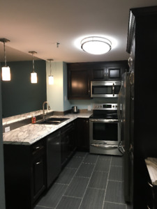 Luxury Furnished Harbour Front Condo in Dartmouth for Rent