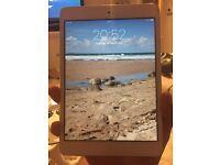 Mint condition iPad mini