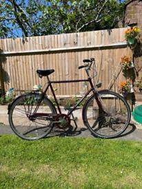 Vintage Raleigh Connoiseur Bike