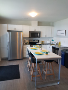 Luxury 3 Bed, 3 Bath Apartment - 12mth Lease!