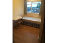 Bright double rooms avalable in mature Surbiton houseshare 5mins to station (2 rooms available)