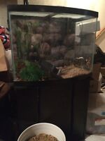 Complete fish tank and stand