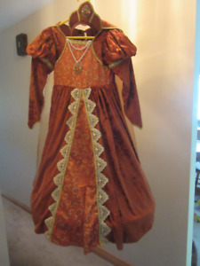 Bronze Velour Medieval Princess Dress