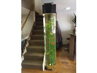 6ft 6 fish tank for sale