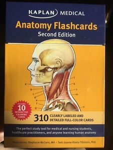 Anatomy flash cards for sale