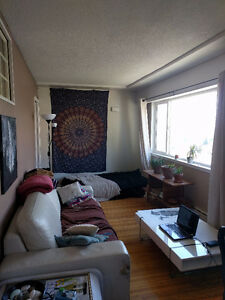 Subletting 1 room in 2 BR apartment for the summer